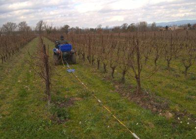 Panneau électrique tracté entre rangs de vignes